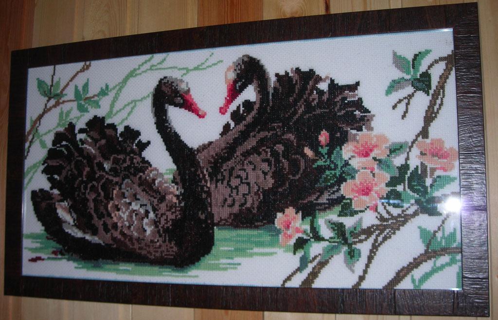 Черные лебеди-набор