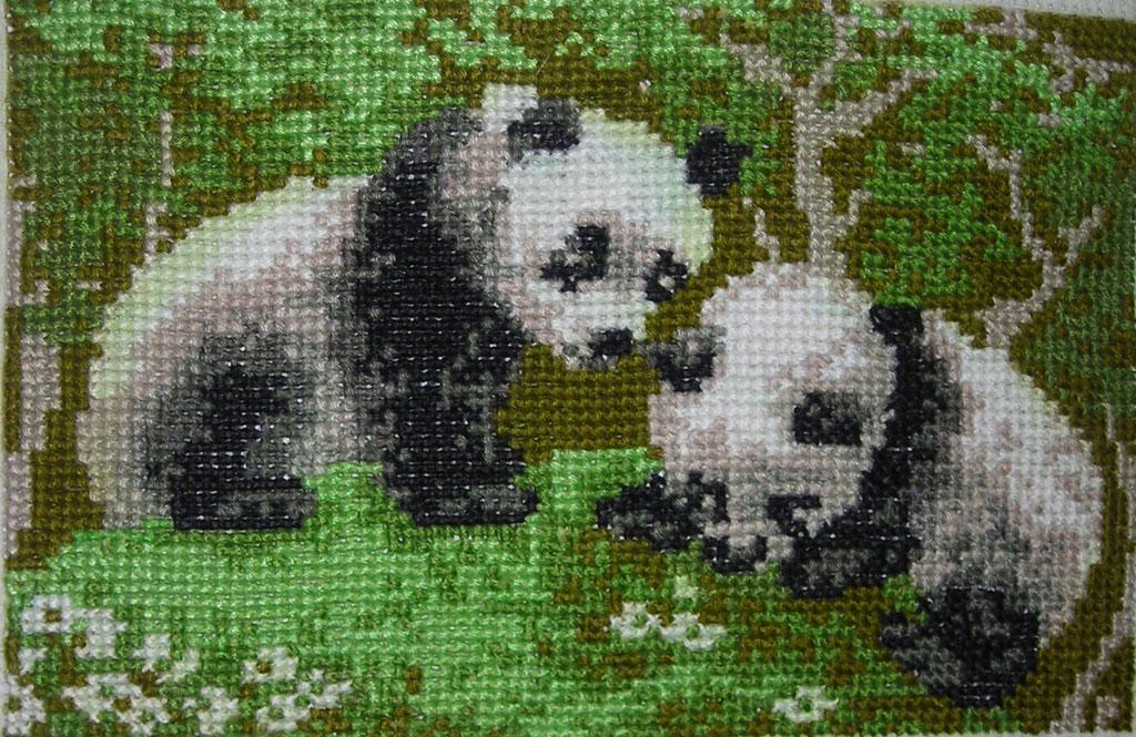 Панды-вышивка по рисунку на